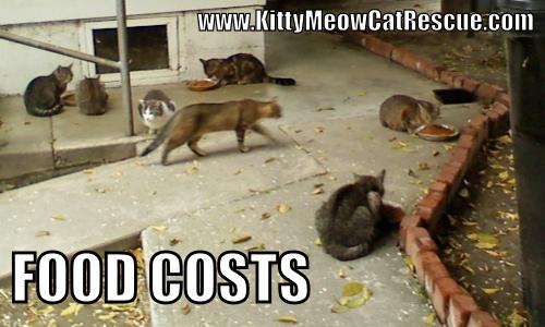 Food Costs Meme